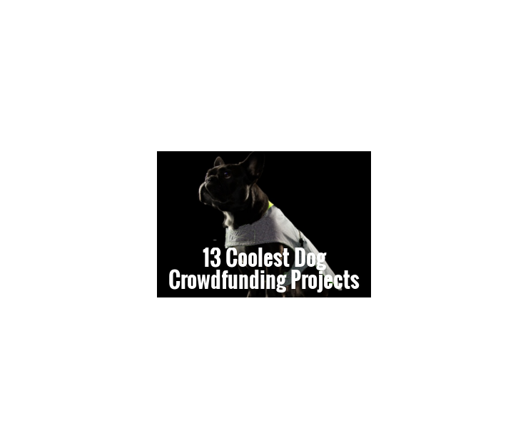 Big crowdfunding thumbnail